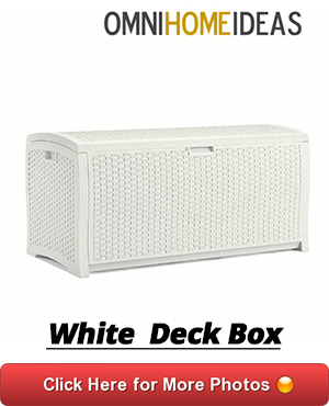 10 WHITE DECK BOX